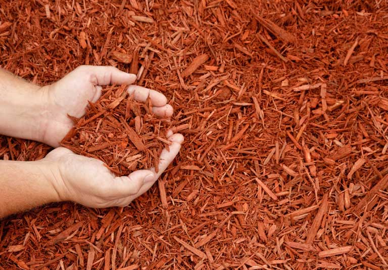 Soil/Mulch Delivery & Installation